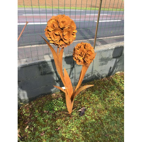 Fleurs Double rouille